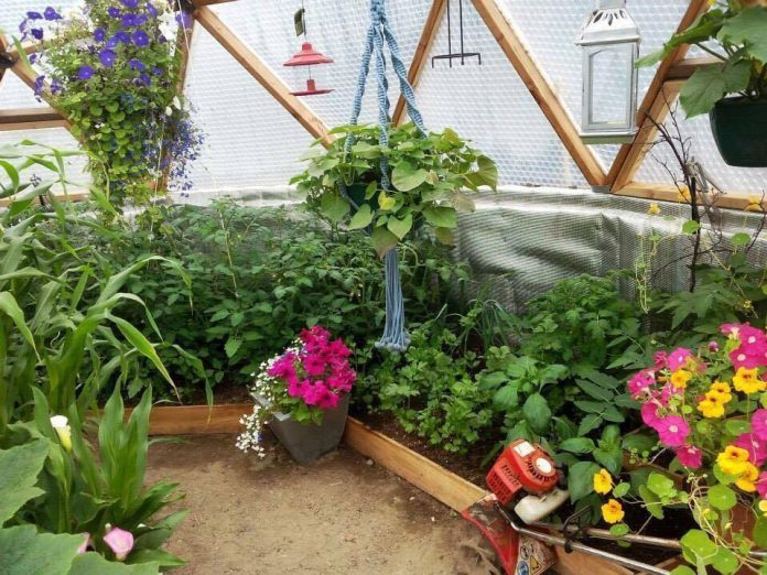 Geodesic Domes Greenhouse Kits Building Maintaining