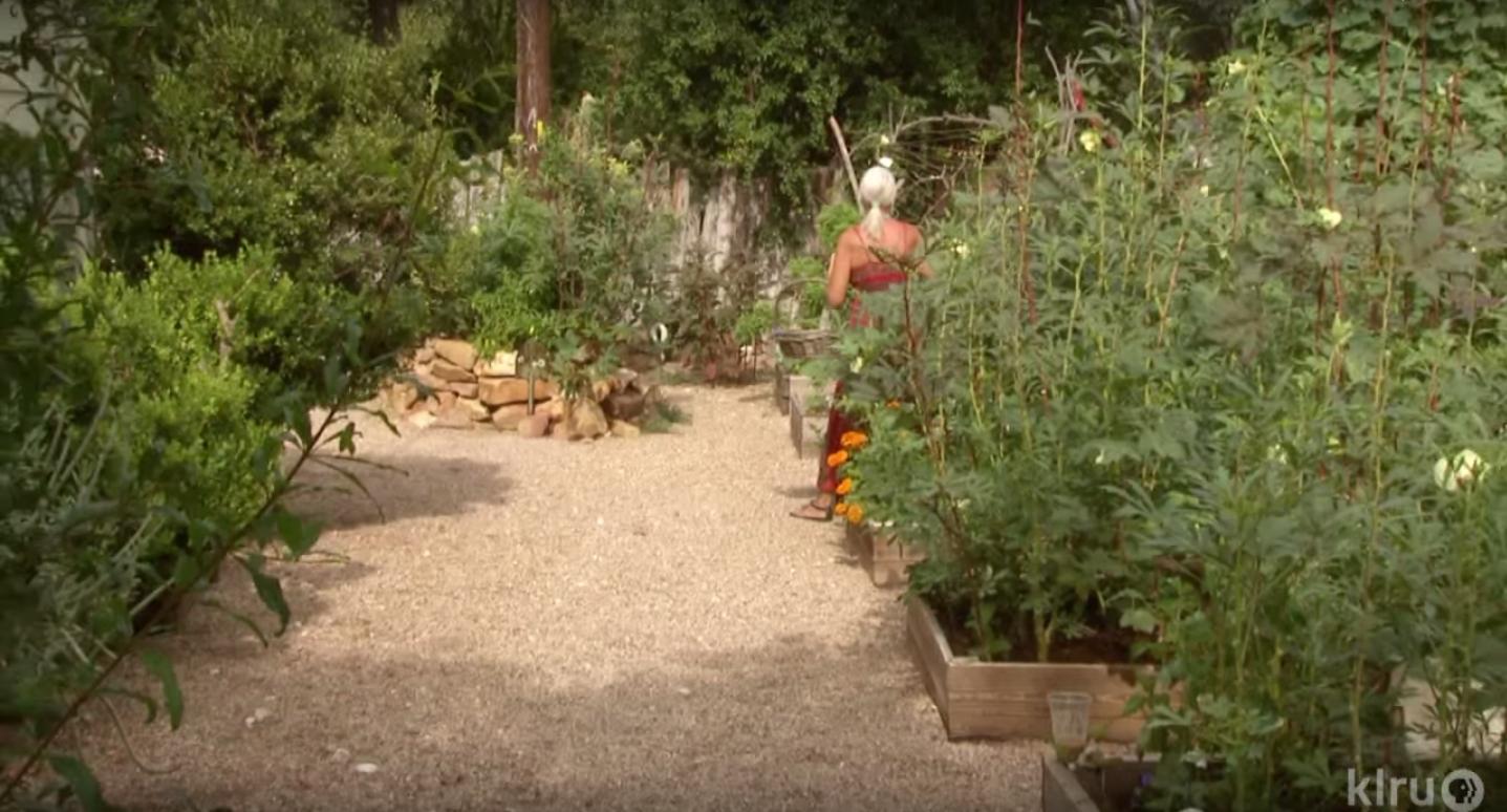 Meredith Thomas' Yard Garden