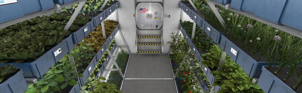 mars_food_production.jpg_1