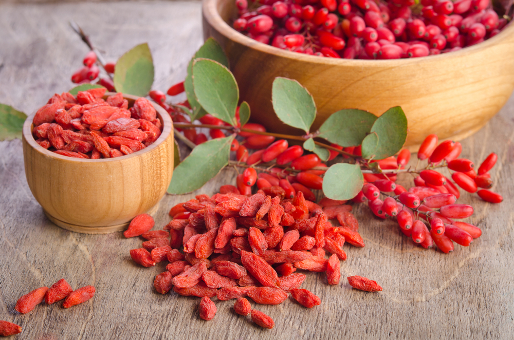 The Matrix, Devani Alderson, Goji Berries, GrowOrganic.org, Health Benefits of Goji Berries, How to Grow Goji Berries, Planting Goji Berries, Pure Healing Foods