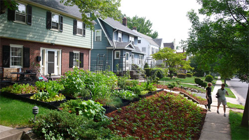 Best edible plants for front yard gardens. #EdiblePlants #FrontYardGardening #EdibleGardening #EdibleLandscape