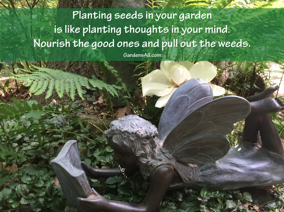 Quotes About Planting Seeds For Life Fair Garden Memes Quotes And Sayings For Life Growth And Inspiration