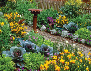 Edible Landscaping, image from Mother Earth News Article. #EdibleLandscaping #OrnamentalEdibles #YardGarden #OrnamentalVegetables