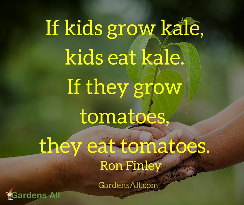 GA - Grow Kale